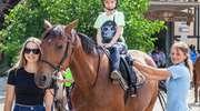 Wiosenne propozycje stadniny koni Iskra