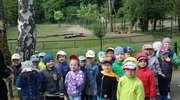 """Przedszkolaki z """"ósemki"""" w gdańskim Zoo"""