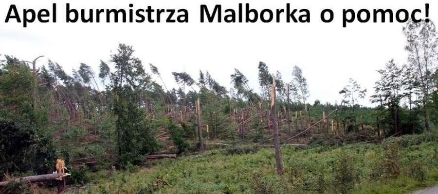 Apel Burmistrza Miasta Malborka o pomoc dla poszkodowanych w ostatniej nawałnicy