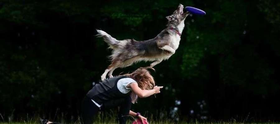 Z miłości do sportu i zwierząt - niezwykła pasja uczennicy I LO
