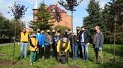 Wspólna akcja sadzenia drzew z okazji Dnia Drzewa