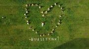 Sukcesy zespołu BURSZTYNKI w Festiwalu-E-Dance Inspirations Online