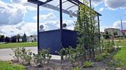Zielone przystanki, łąki kwietnie, nowe nasadzenia – naturalnie w Malborku!