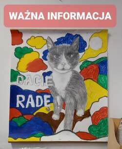 "plakat z kotem i napisem ""Damy Radę"""